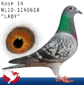 NL14-NL10-1140618 'Lady' edited