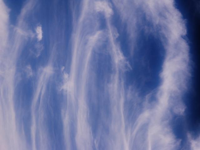 Windsprong