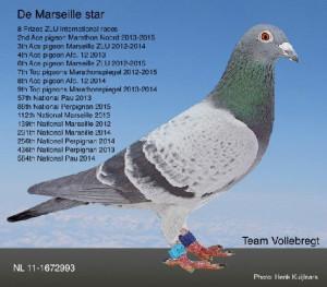Marseillestar