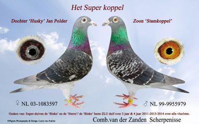 Jan van der Zanden Scherpenisse moet afstand doen van zijn duivenkolonie (deel 2)