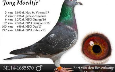 De Kweek 2018: Bart van den Bovenkamp