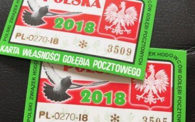 Dagboek van een duivenmelkster … Poolse duivenlossingen in Ede