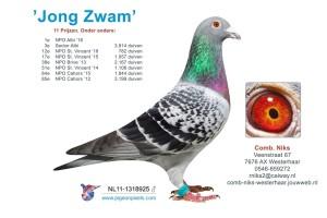 Jong Zwam klein
