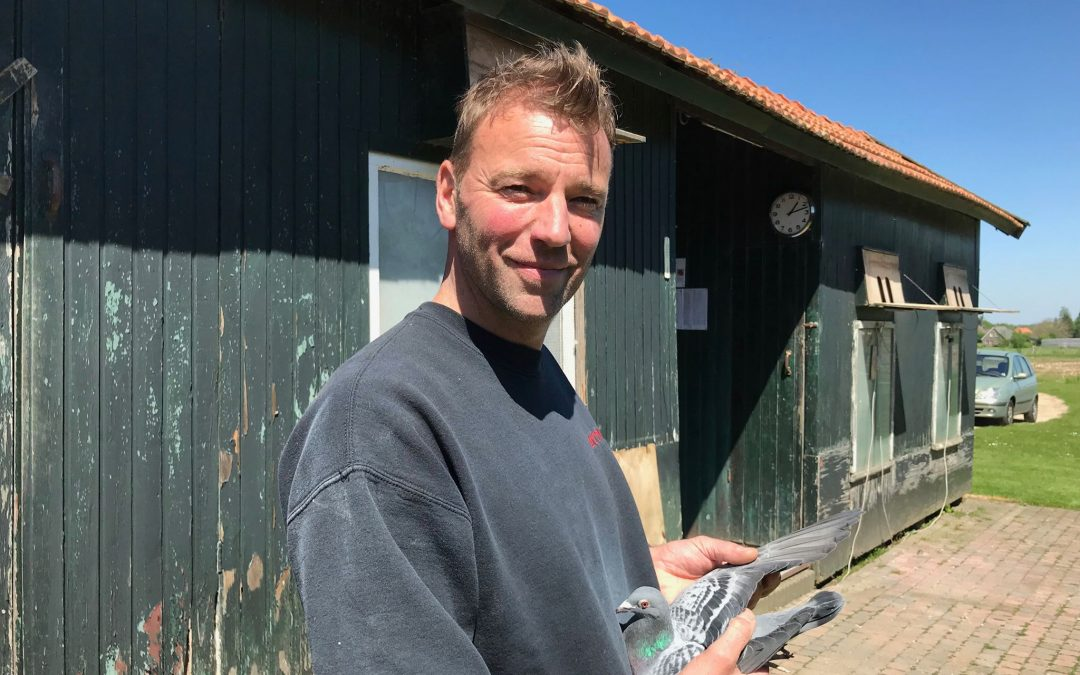 Veiling Marathonduivenjournaaldag op 28 december in Soest (toegift 2)
