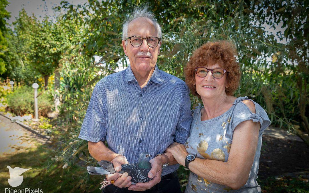 De verzorging van de duiven door Wim Kooreman tijdens de corona-crisis