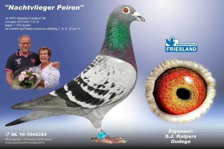Simon Kuipers, Oudega, wint Limoges in Afdeling 11 Friesland (deel 2 en slot)