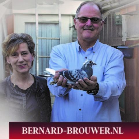 Bernard Brouwer, Breda, 2020 weer een topjaar (2)