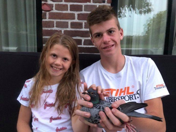 Marc Gielen, Maasbree, wint Nationaal Agen Jaarlingen (2 en slot)